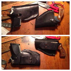 Conceal carry cases