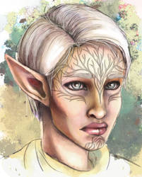 Inquisitor Lavellan by NarutoLover6219