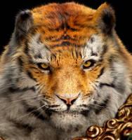 Tyrh Warrior portrait by CaliCg