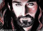 Richard Armitage, Thorin Oakenshield, sanguine