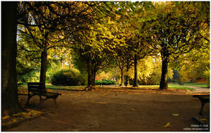 autumn in park II by Wilithin