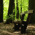 take a seat, Spring