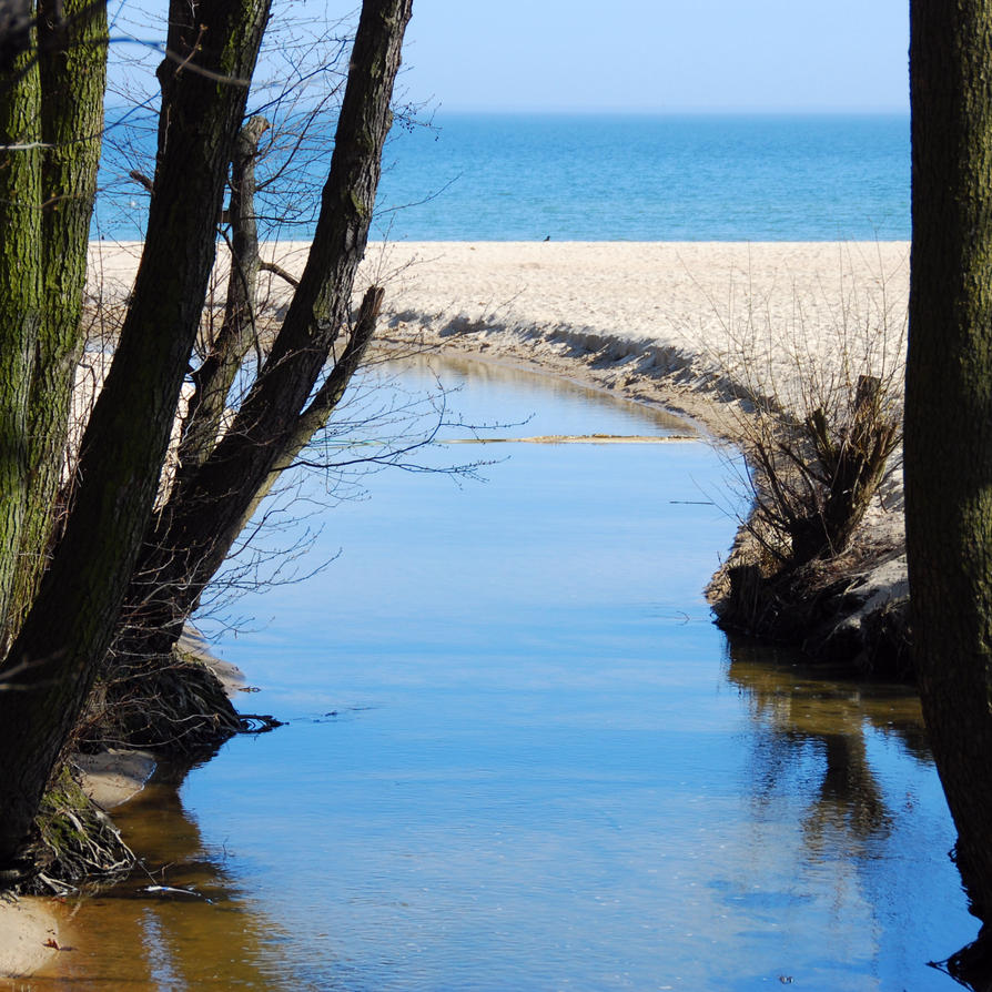 mouth of a river by Wilithin