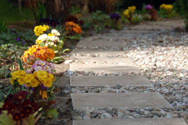 primrose path by Wilithin