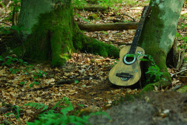 music in the forest