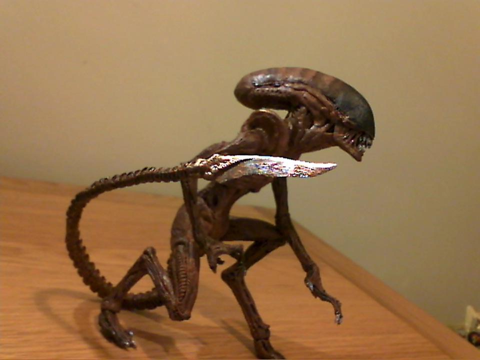 custom dog alien  runner  Xenomorph Runner