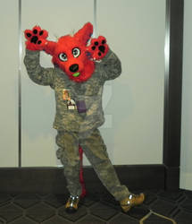 Stele Dragondog