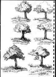 Random Trees