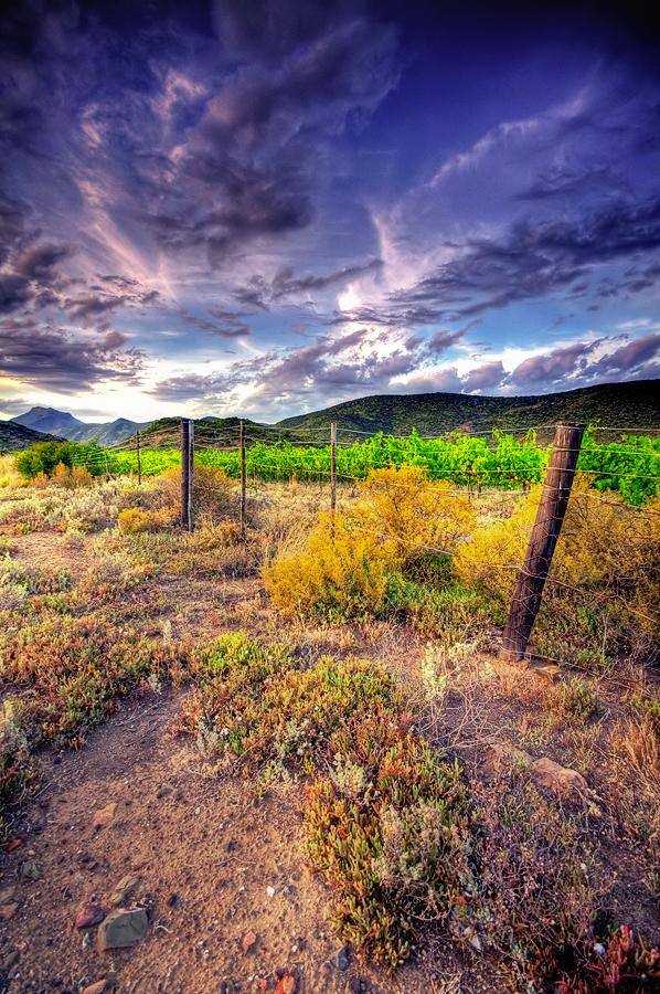 Montagu Farmscape by TheDigitalVee