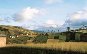 Mocha- Ecuador