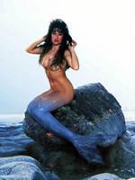 Debbie D Mermaid by SeatailsArt