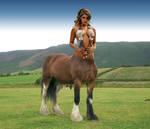 Hebrian Centaur