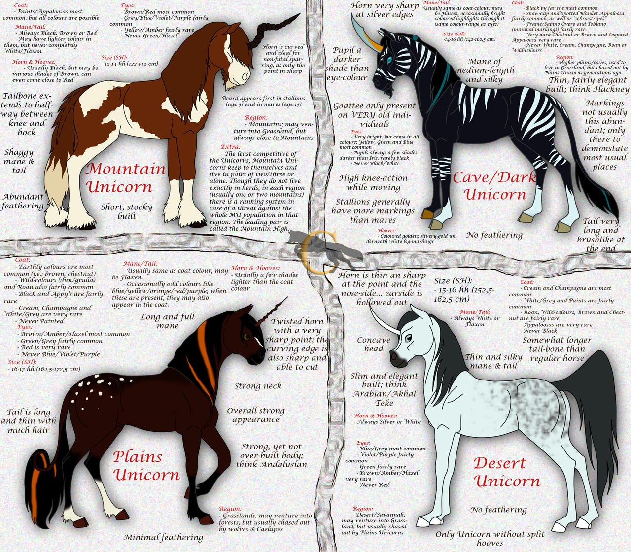 unicorn types by flareandicicle on deviantart