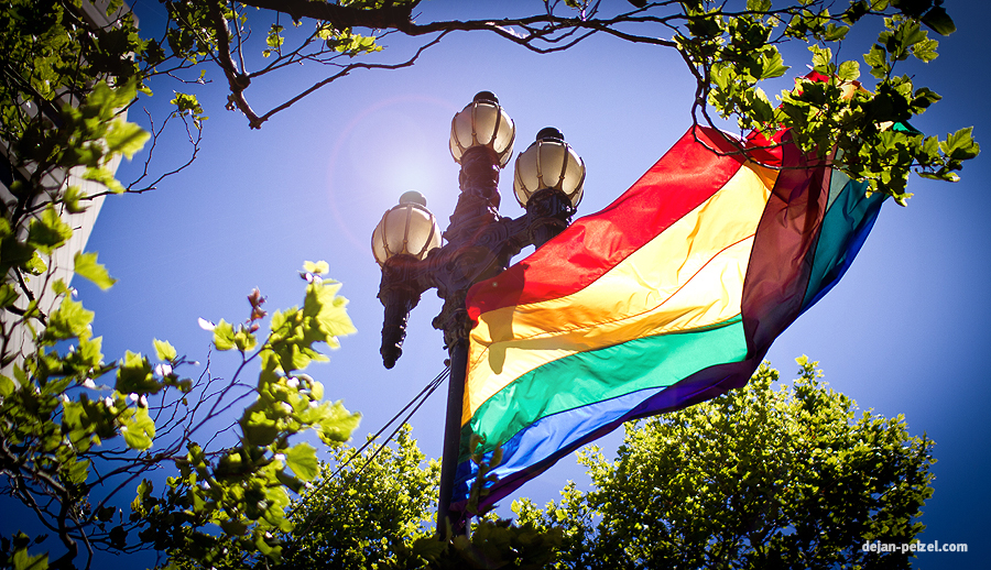 Rainbow Flag - San Francisco Pride Parade by DejanPelzel