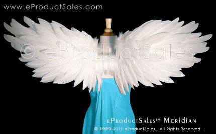 eProductSales Meridian Wings by eProductSales