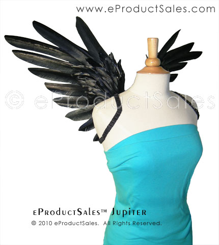 epsJUPITER ANGEL WINGS Front by eProductSales