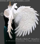 White Angelica Feather Angel Wings eProductSales