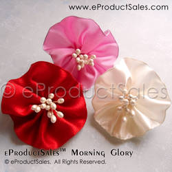 Morning Glory Flowers Valentine Hair Clips by eProductSales