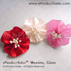 eProductSales Morning Glory Valentine Hair Clips