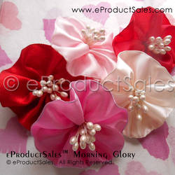 eProductSales Morning Glory Be My Valentine Clips by eProductSales