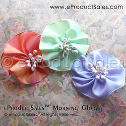 eProductSales MorningGlory Tea Garden hair clips by eProductSales