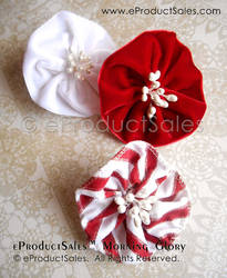 Peppermint Morning Glories Hair Clips Holiday Art