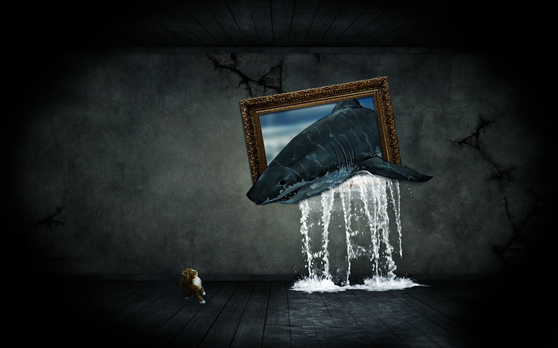 sharks frame wallpaper by Niissi