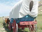 Covered Wagons 2