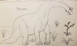 Dinosaur Drawing: Brachiosaurus