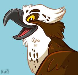 Osprey by kubo