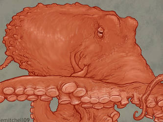 Octopus Sketch by pixelfish