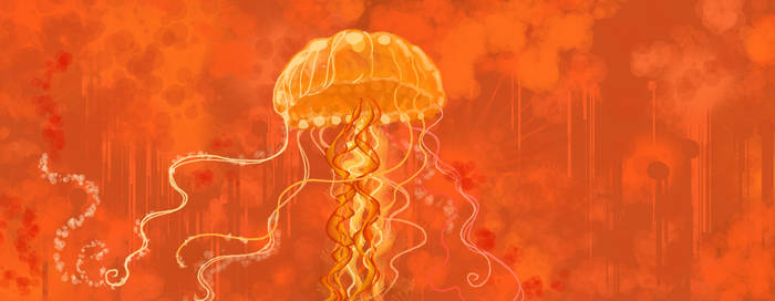Jellyfish 01 by pixelfish