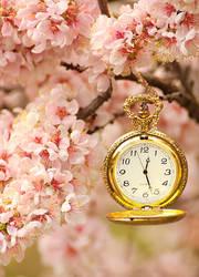 .:: Spring Time ::.
