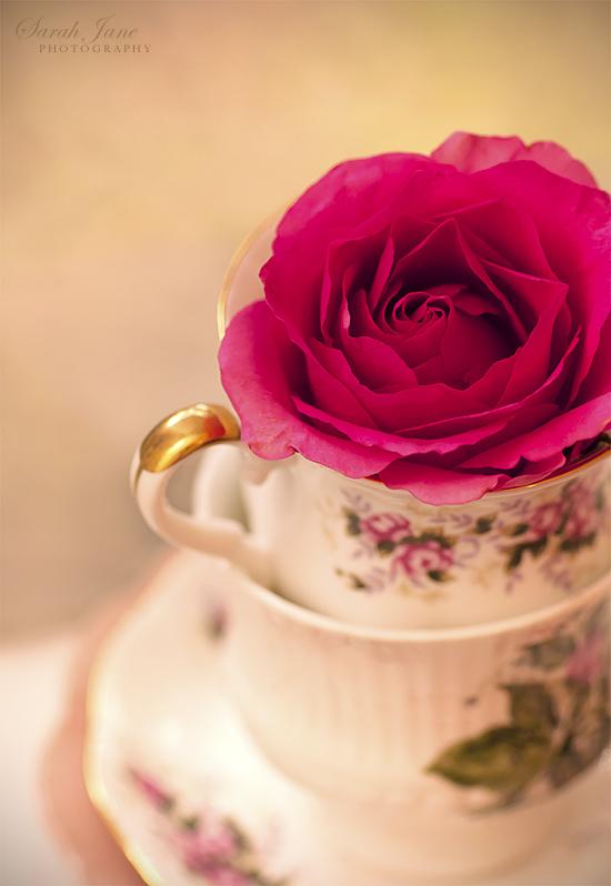 najromanticnija soljica za kafu...caj - Page 3 D28db1f9351c10500b56ea3b253b5292-d3ggvbr