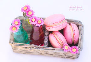 .:: Raspberry Macarons ::. by Whimsical-Dreams