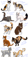 WARRIORS Natural Cat Adopts (CLOSED) by EmperorZurgs-Adopts
