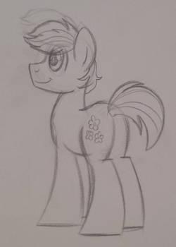Double Diamond Sketch