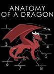 Anatomy Of A Dragon (Draft)
