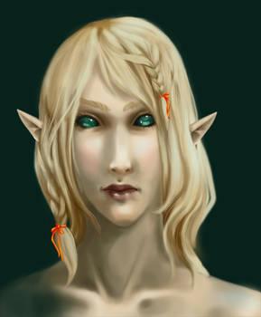 Eladrin Wizard Closeup