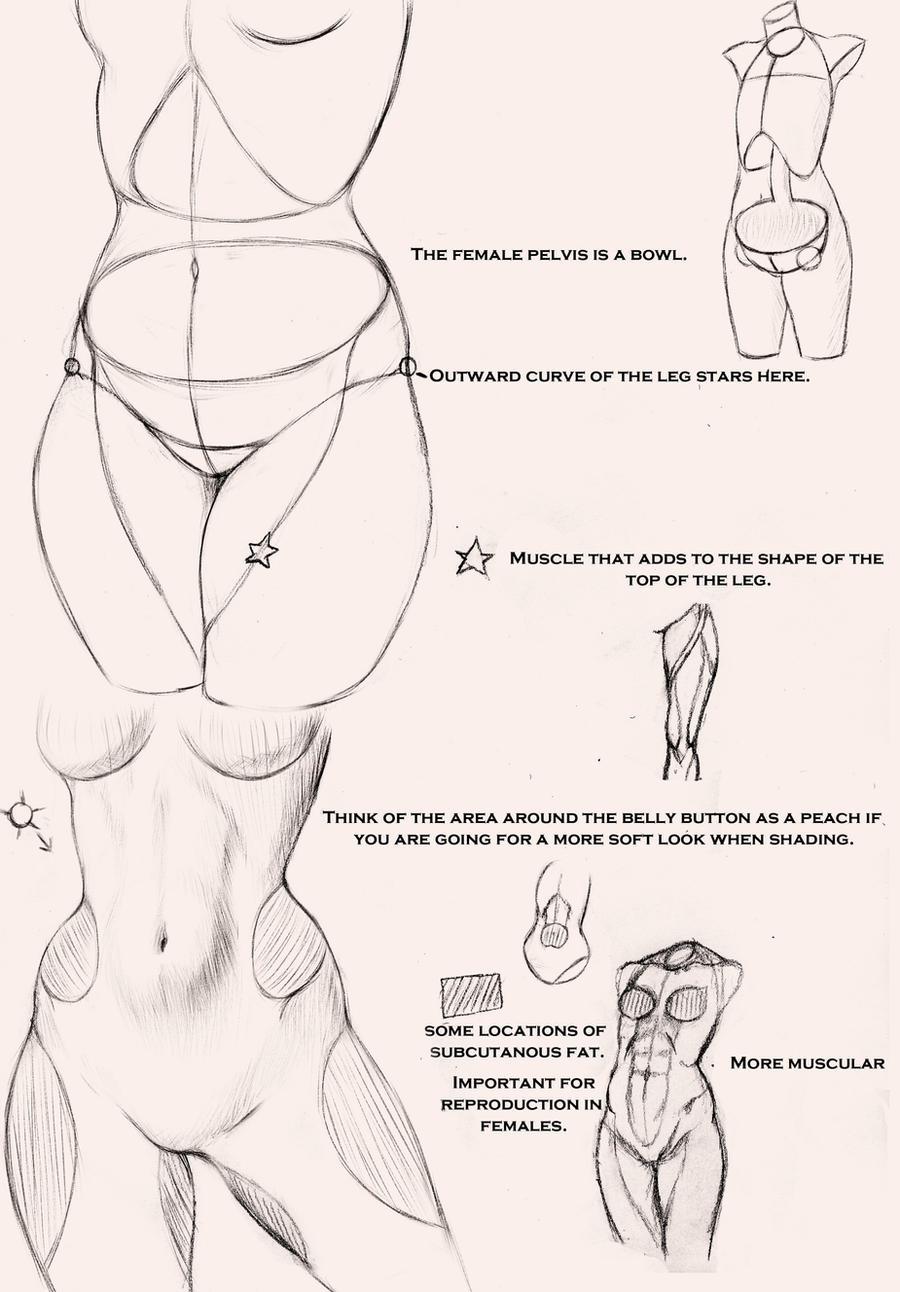 Drawing Body On All Tutorials Deviantart