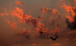 Crimson Skies by Rhondafdez