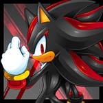 Shadow The Hedgehog (Hero on your own)