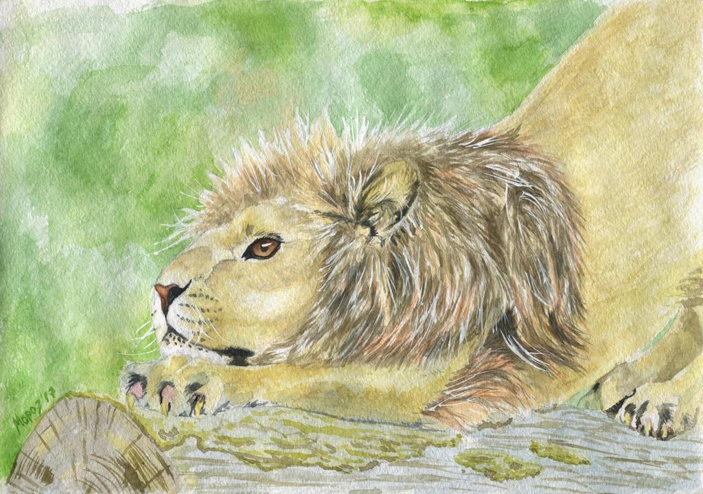 Stretching lion by dimasbka