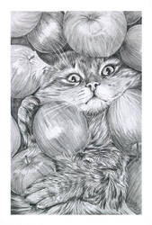Apple Cat by dimasbka