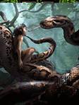 Kaa and Mowgli Jungle Book Movie concept art