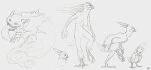 Evolution of my Torchic and........a Gengar