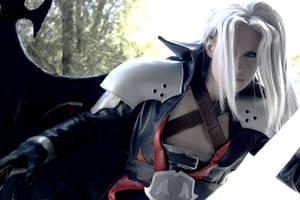 Sephiroth - Warrior by NanjoKoji