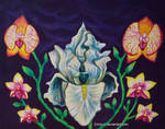 Orchids and iris