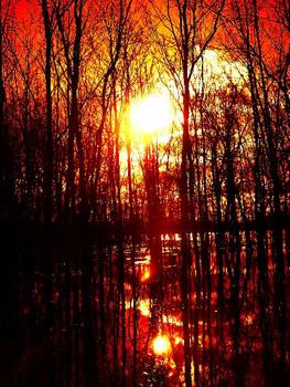 Red Sky Flood