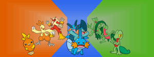 Gen 3 starters and their evos.